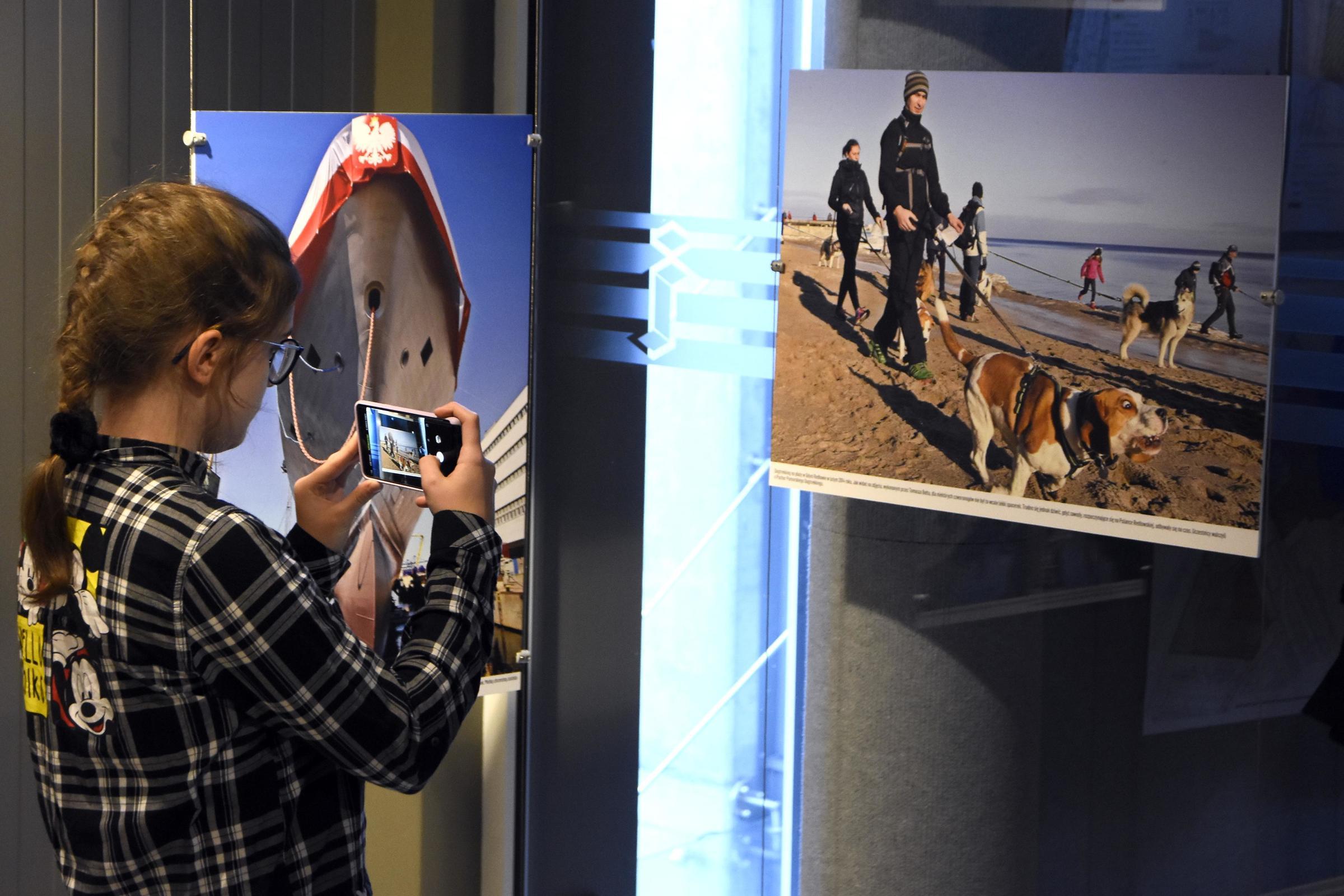 """Czasami wołał mnie, """"chodź, zobacz jaki ciekawy temat, jakie śmieszne zdjęcie udało mi się zrobić"""". Tu właśnie wisi taka fotografia z dog tracking'u, która od razu wpadła mi w oko - mówiła Magdalena Bołt, fot. Jan Ziarnicki"""