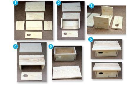 Instrukcja budowy budki lęgowej dla jerzyka
