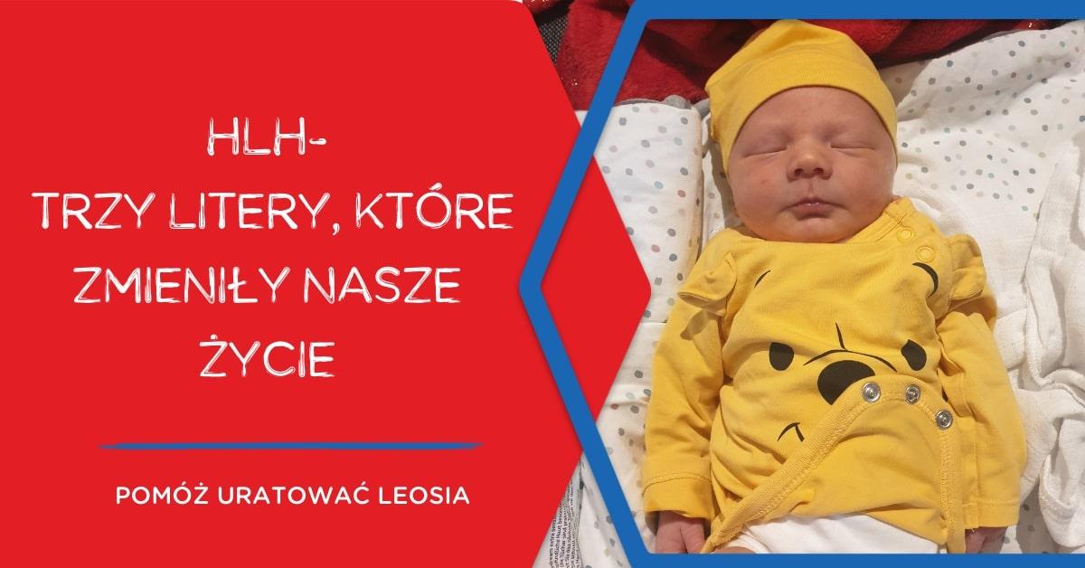 Plakat ze zdjęciem Leosia HLH – trzy litery, które zmieniły ich życie. Pomóż uratować Leosia. Mat. prasowe DKMS.