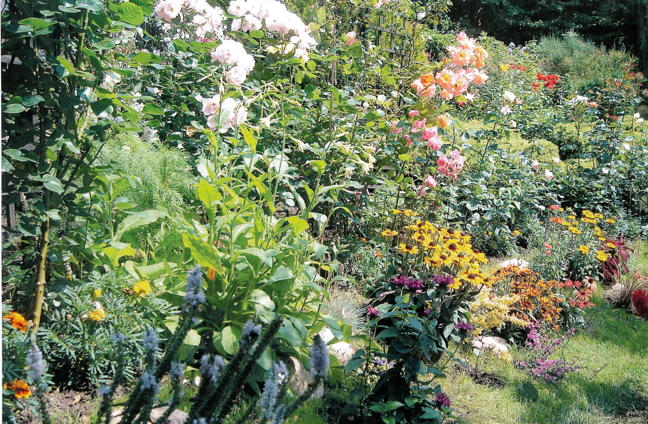 aranżacja autorstwa Katarzyny Osieckiej i Krystyny Bilkiewicz, w której przeważają róże, rudbekie, aksamitki i złocienie