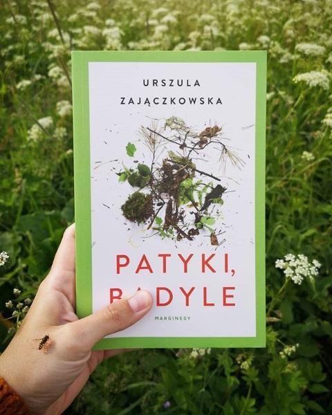 """Urszula Zajączkowska """"Patyki, badyle"""""""
