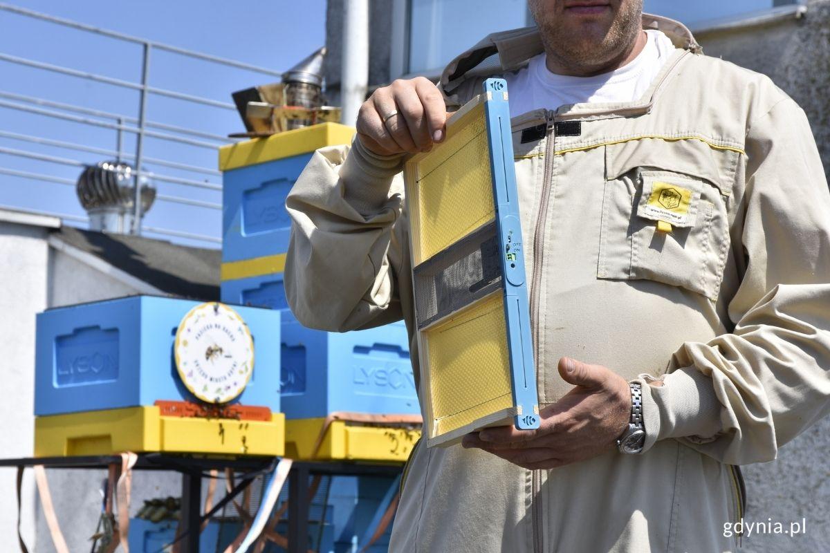 Ramka wyposażona w czujniki i mikrofon wkładana jest do ula // fot. Weronika Rozbicka