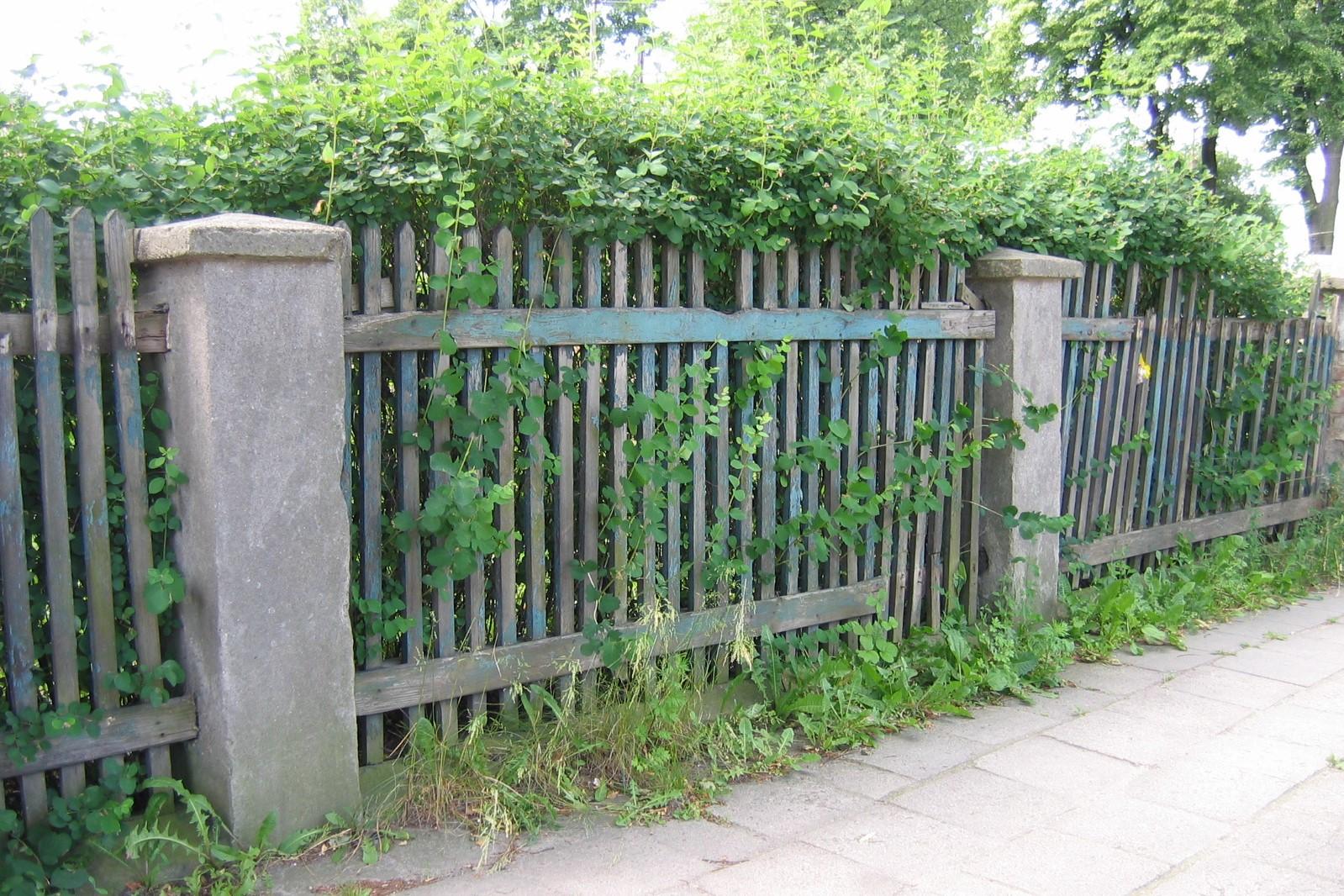 Ogrodzenie willi w Orłowie z lat 20. XX w. z drewnianymi elementami i murowanymi słupkami