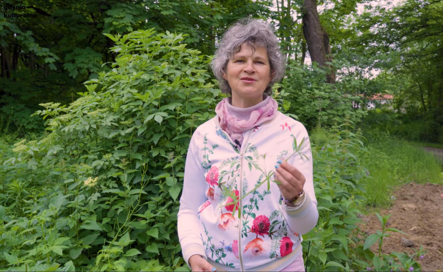 Dzika Gdynia - Dorota Grądzka