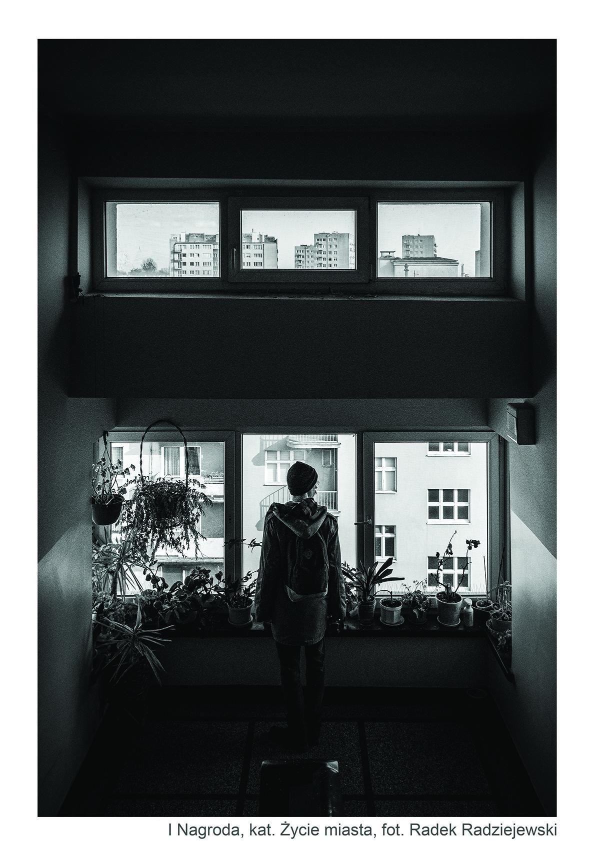 I Nagroda, fot. Radek Radziejewski