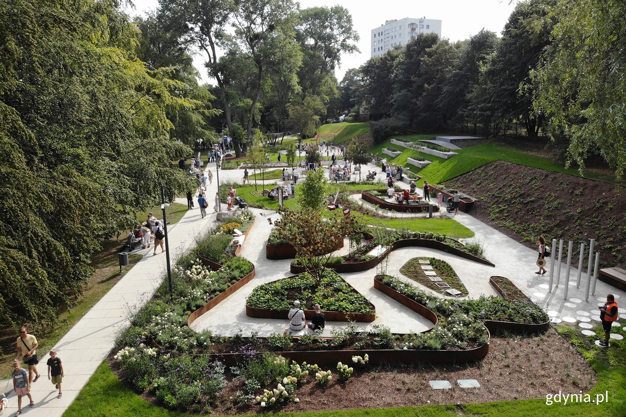 Park Centralny w Gdyni, fot. Michał Puszczewicz / archiwalne