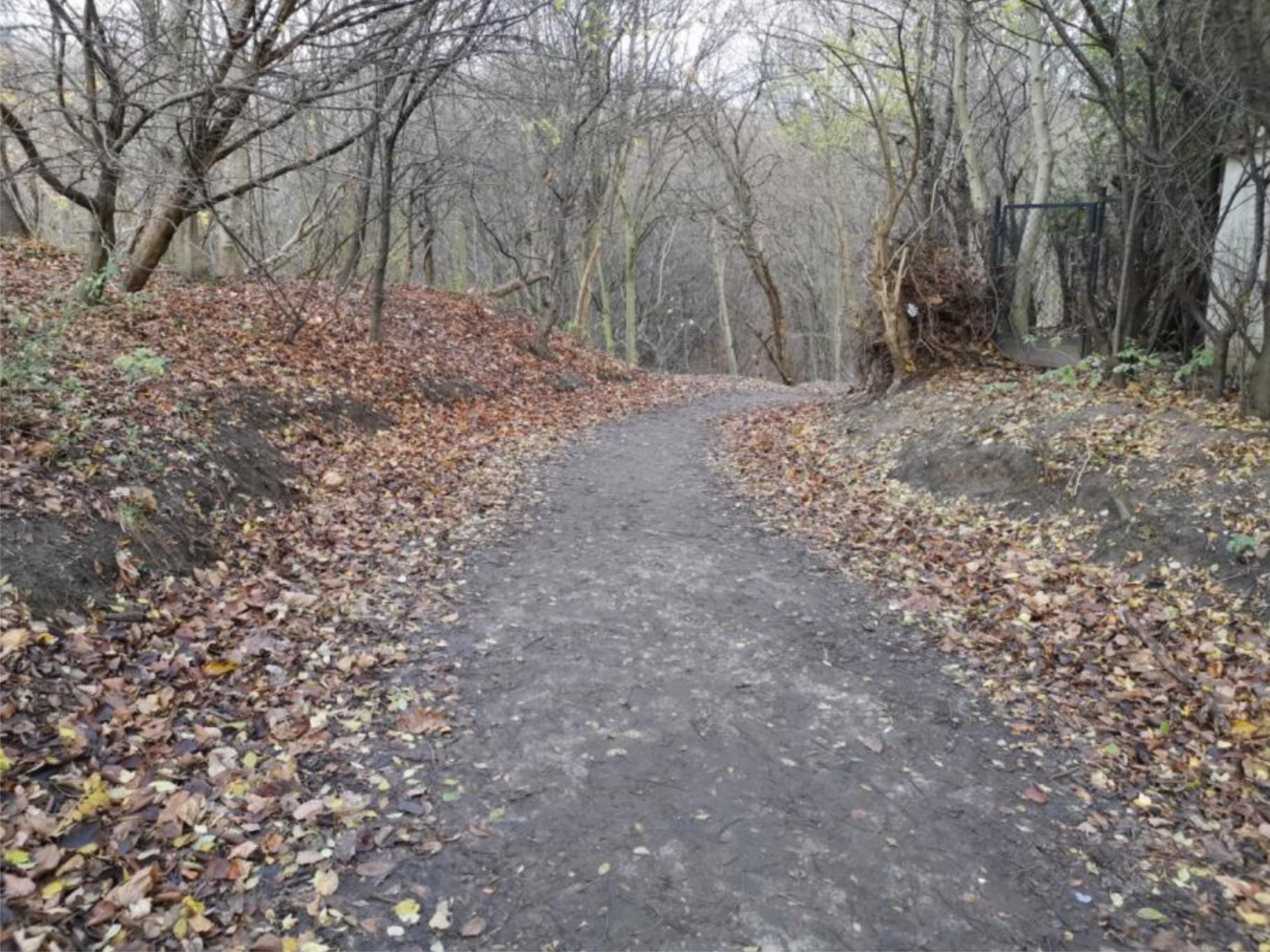 Ścieżka prowadząca z ulicy Orląt Lwowskich do Polanki Redłowskiej, fot. WOM