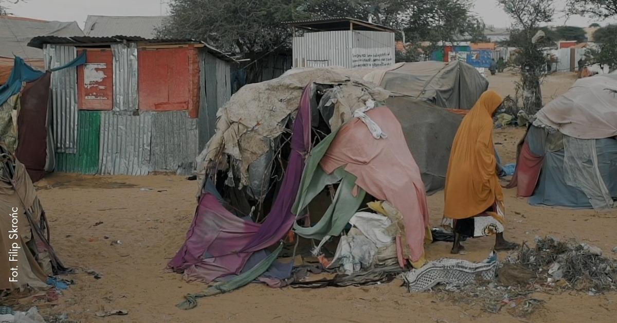Nie/prawdziwe zdjęcia fot. Filip Skrońc, źródło: Szkoła Humanitarna