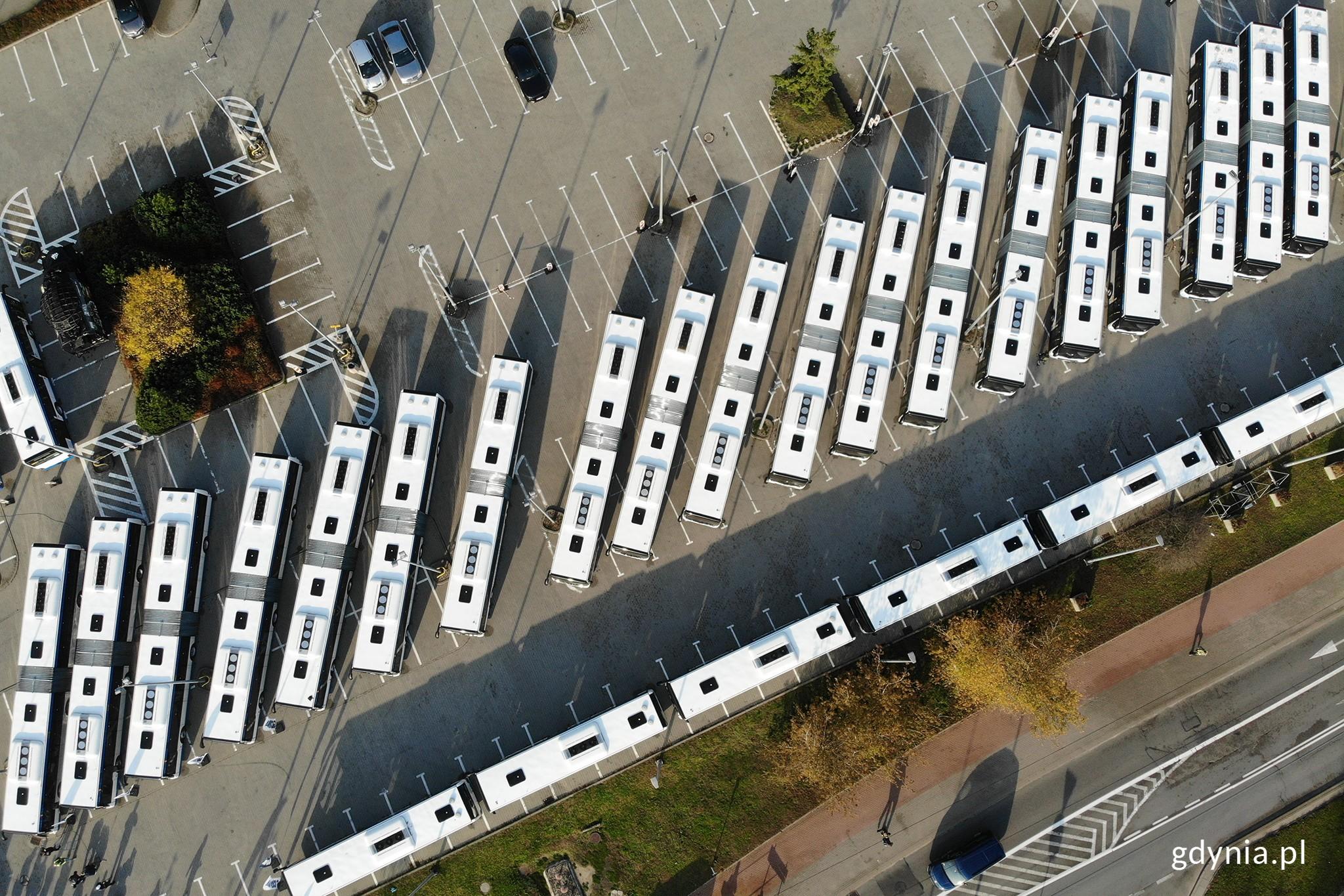 55 nowoczesnych i ekologicznych autobusów trafiło do Gdyni // fot. Michał Puszczewicz