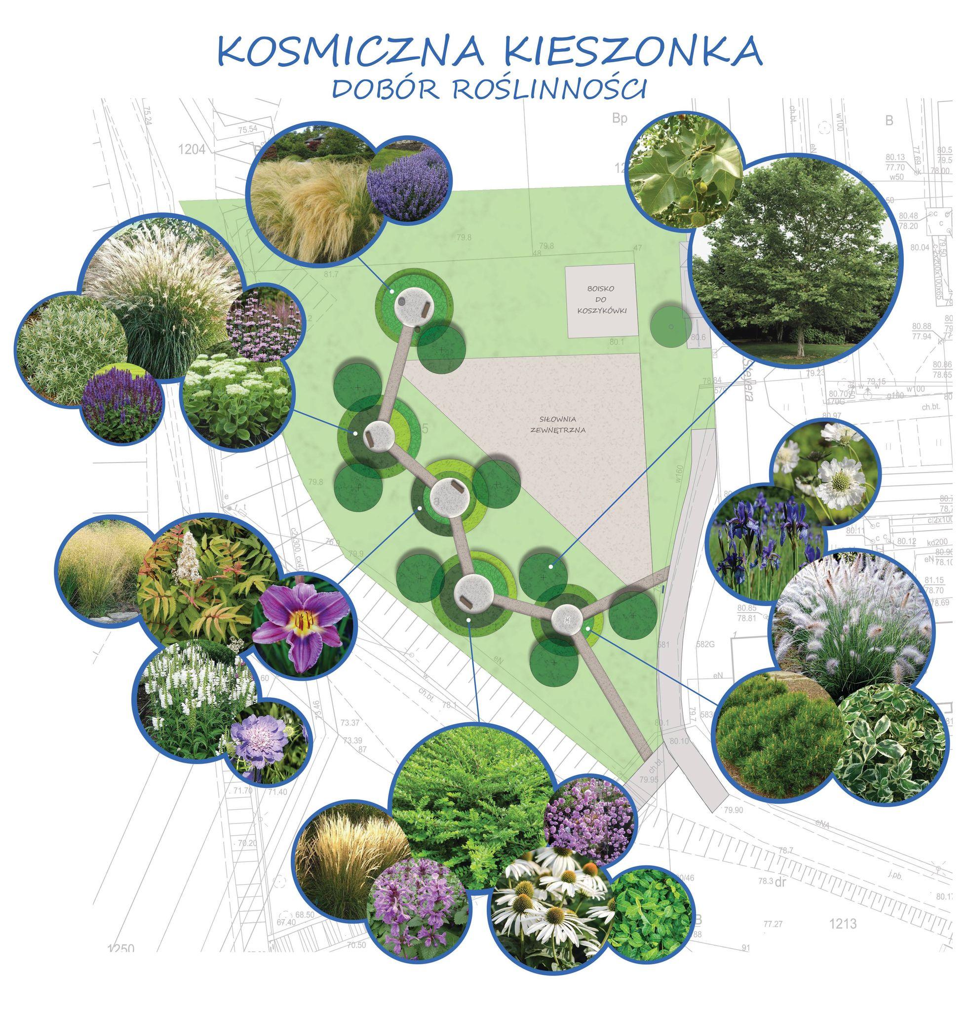 projekt kosmicznej kieszonki, mat. Wydział Ogrodnika Miasta