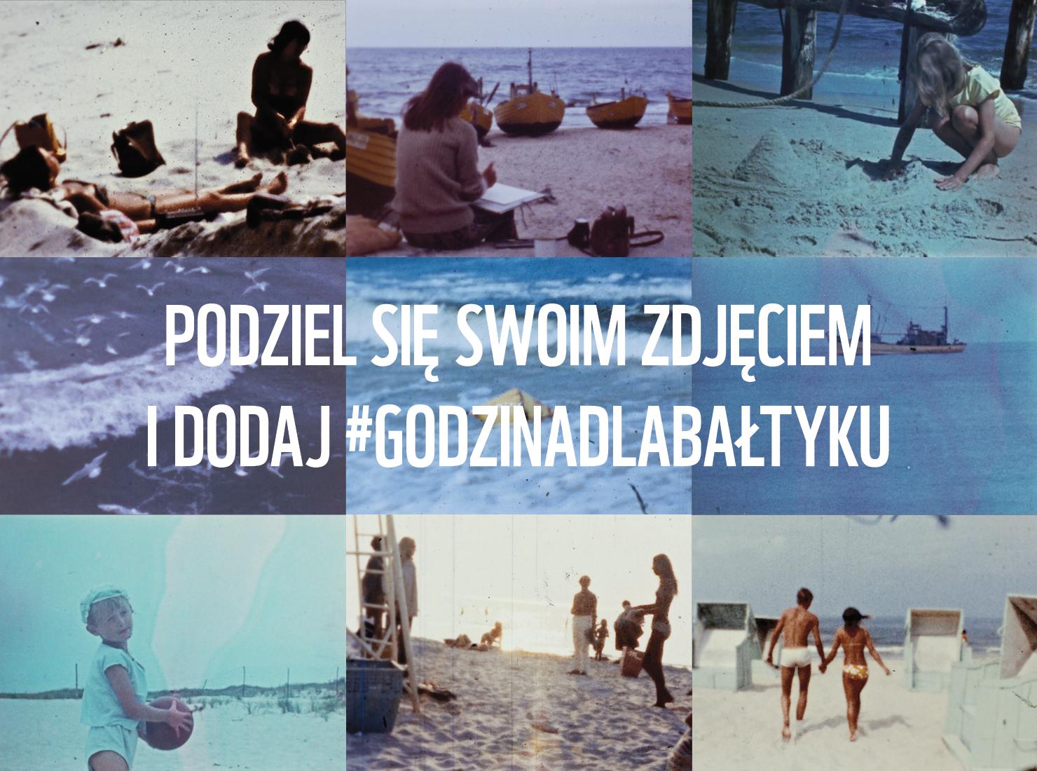 Sentymentalne zdjęcia znad Bałtyku, źródło: WWF Polska