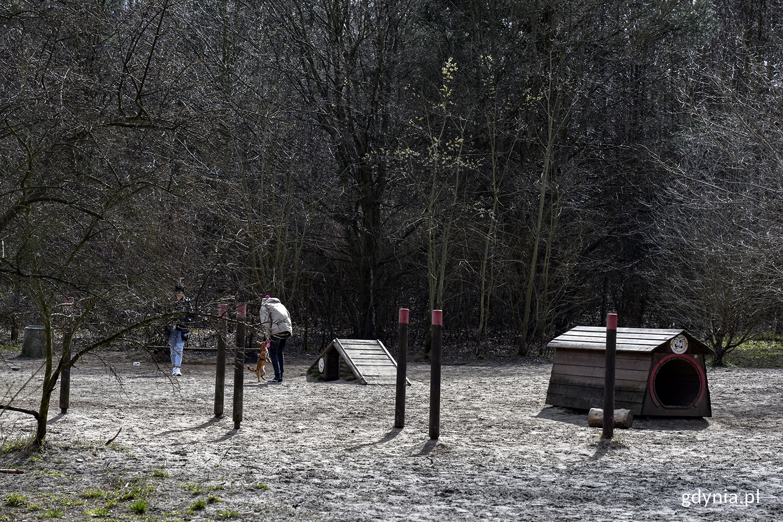 Wybieg dla psów w Kolibkach. Fot. Sławomir Okoń