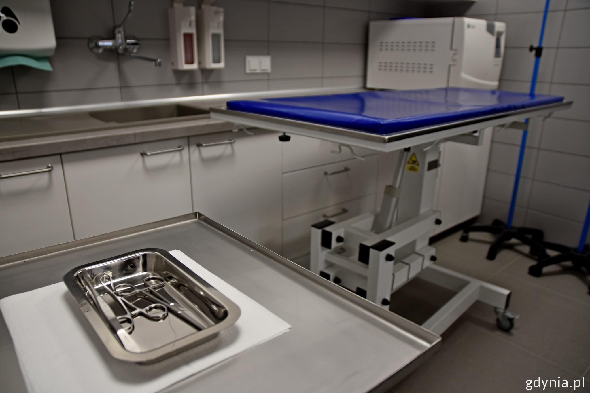 Sala operacyjna umożliwi zająć się najbardziej potrzebującymi zwierzętami // fot. Paweł Kukla