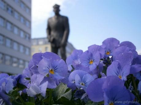 W konkursie Gdynia kwitnie wyróżniono zdjęcie Marta Burczyk - Kwiatki pana Abrahama