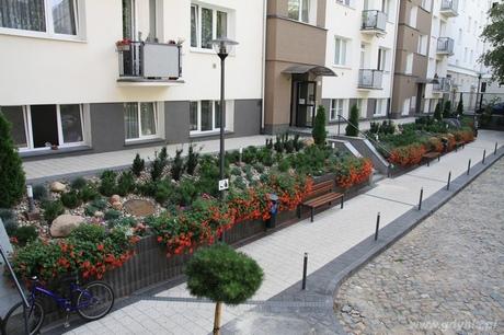 W kategorii instytucji, firm i wspólnot w konkursie Gdynia w Kwiatachnagroda główna przypadła Wspólnocie Mieszkaniowej przy ul. Świętojańskiej 139 blok III