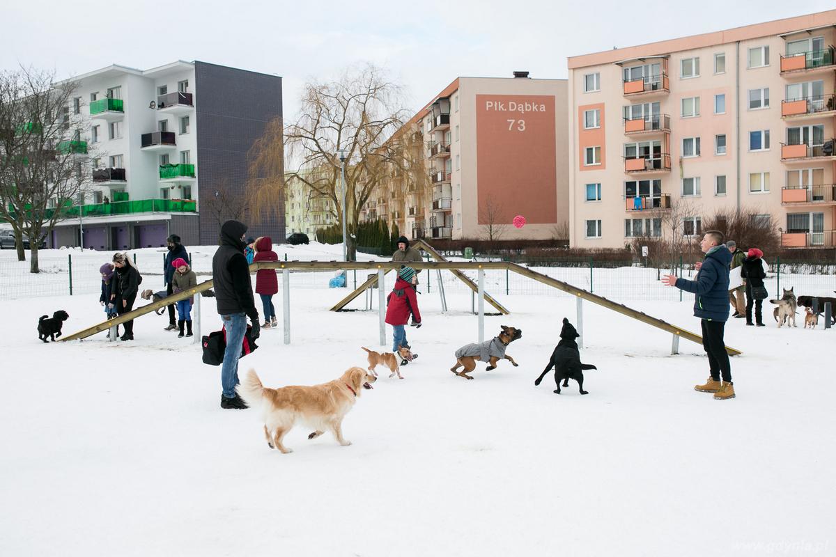 Otwarcie Łączki merdających ogonów - ogrodzonego wybiegu dla psów, fot. Karol Stańczak